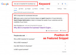 why seo is important for business seo expert